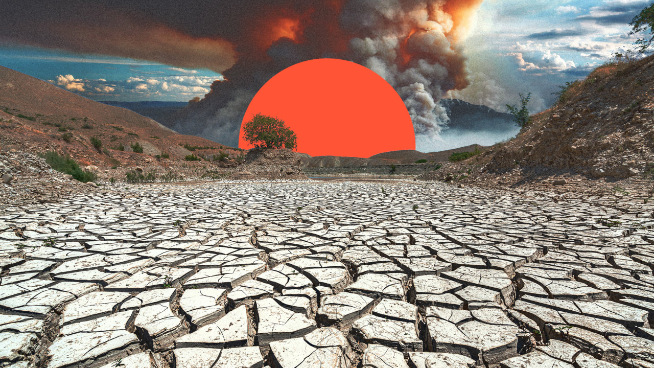 By 2050, the U.S. will lose $83 billion a year because of all the nature we've destroyed