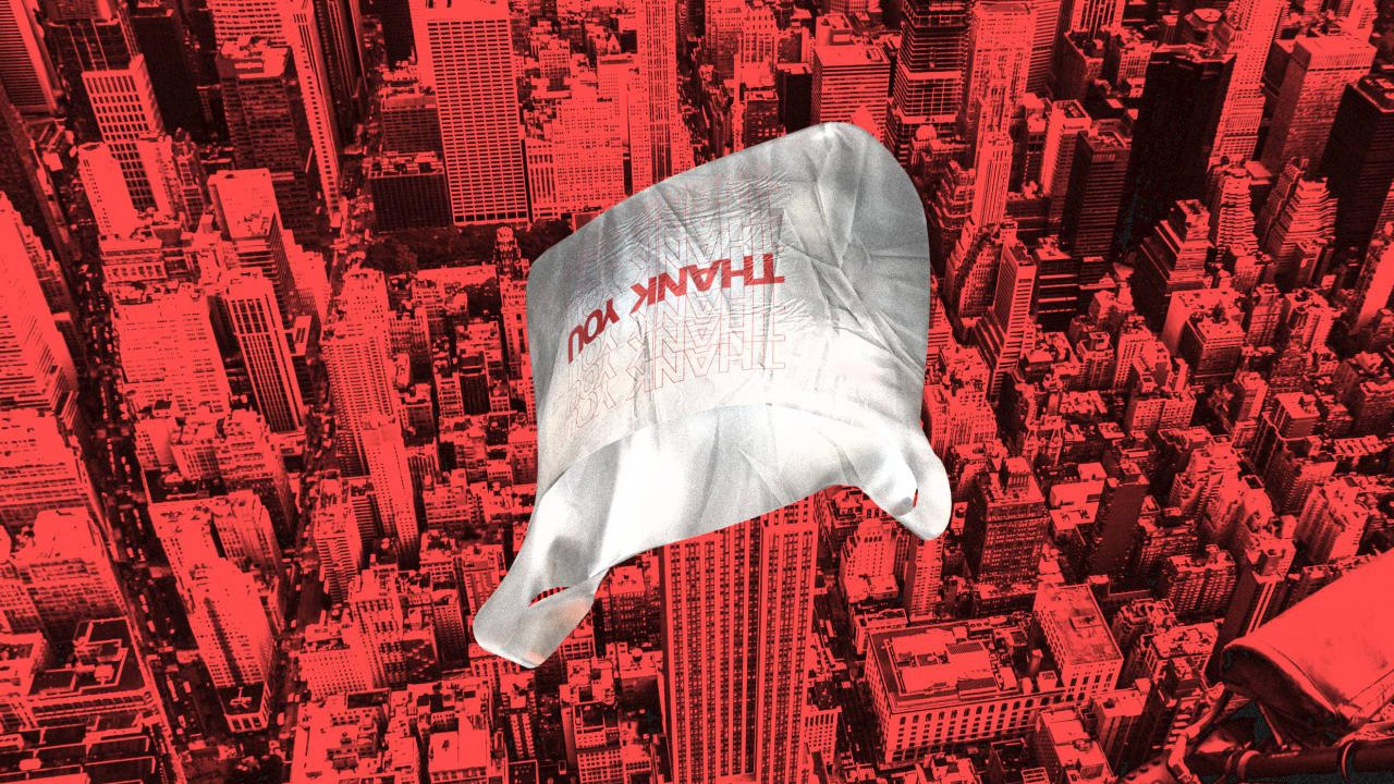 What to expect when New York bans plastic bags