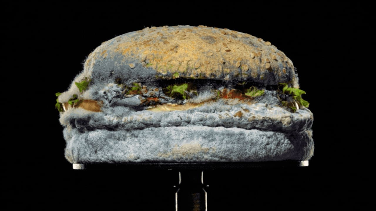 Burger King celebrates no preservatives with this disgusting Moldy Whopper