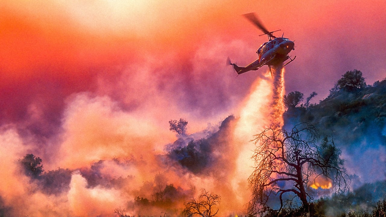 Are bigger wildfires the new normal? This simulation suggests a decline after 10 years
