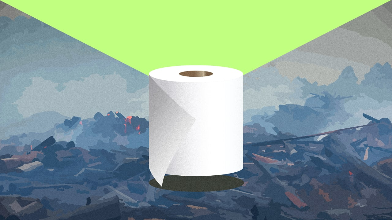 Toilet paper really is terrible for the planet. Here's what you can do about it