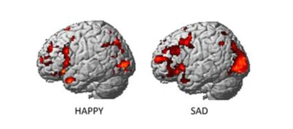 How Our Brains Decide What We Share Online - Curious study reveals how our body reacts to emotions