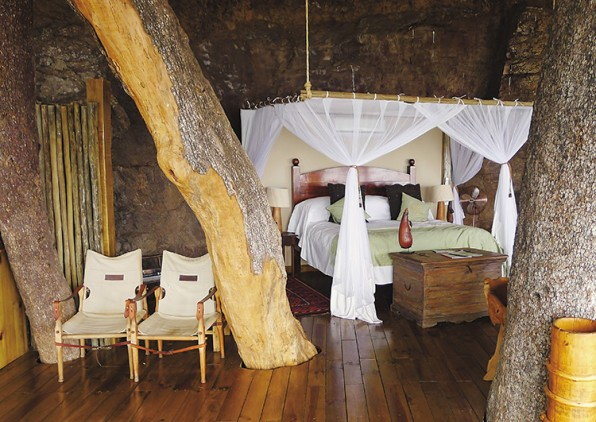 this lavish resort is perched over the bank of the zambezi river which marks the border between zambia and zimbabwe trunks of a riverine ebony tree rise - Treehouse Masters Inside