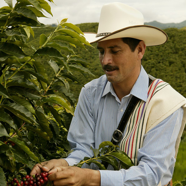 juan valdez Product features tastes of colombian coffee imported from juan valdez in colombia.