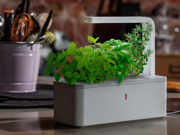 Kickstarting: A Gadget For Growing Herbs, With Nano-Tech Fake Soil