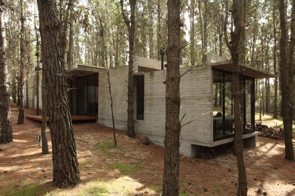 A Forest Hideaway Proves Concrete And Cozy Can Go Together