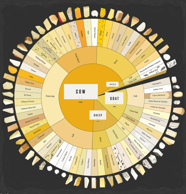 Infographic: How To Tell The Difference Between 66 Varieties Of Cheese