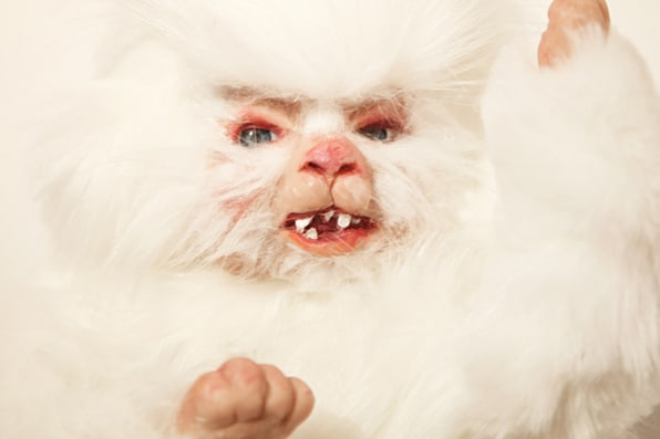 Puppy Babies The Ultimate In Cute Or The Stuff Of Nightmares