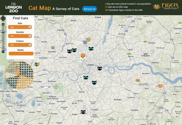 Cat Map on