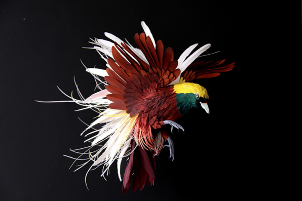 The Unbelievable Beauty Of Papercraft Plumage