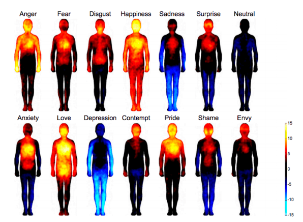 Are emotions what our What Are
