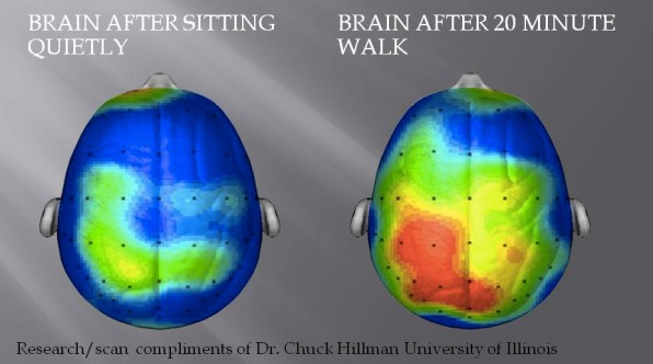 What Happens To Our Brains When We Exercise And How It Makes Us Happie
