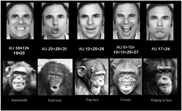 The Tenuous Science Of Facial Recognition