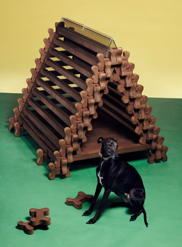 6 Of The Best Designed Homes For Cats And Dogs