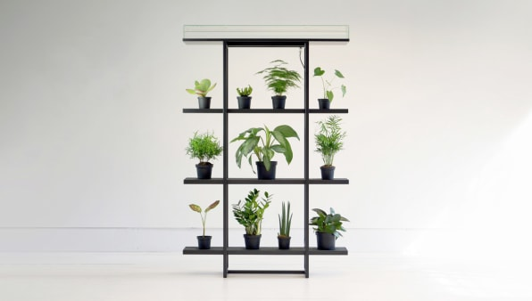 This Shelf Automatically Waters Your Plants