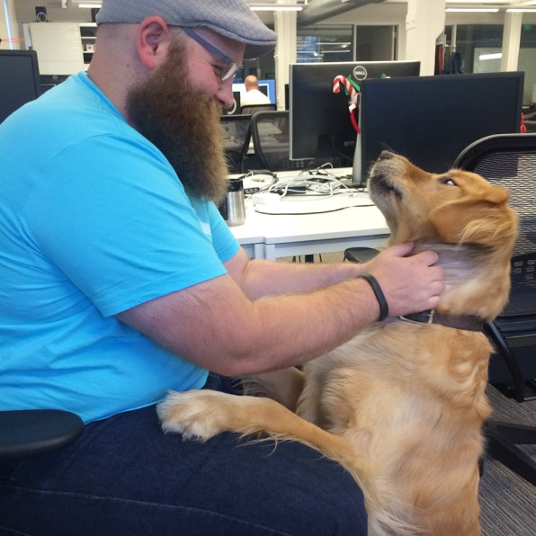 A Day In The Life Of An Office Dog