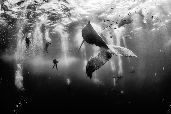 Meet The Winner Of National Geographic's Travel Photo Contest