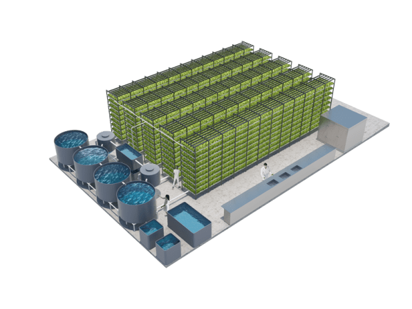 A Massive Aquaponic Lettuce And Fish Farm Will Grow In A Brooklyn Ware