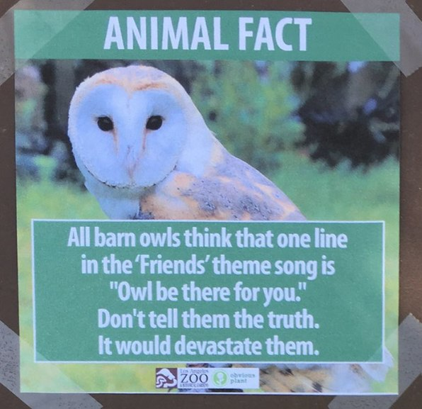 Zoo Troll Leaves Behind Hilarious Fake Animal Fact Signs