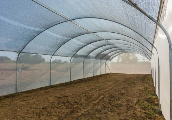 This Low-Cost Greenhouse Is Designed To Help The Poorest Farmers