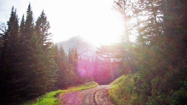 How Tiny Bozeman, Montana, Became A Booming Tech Town