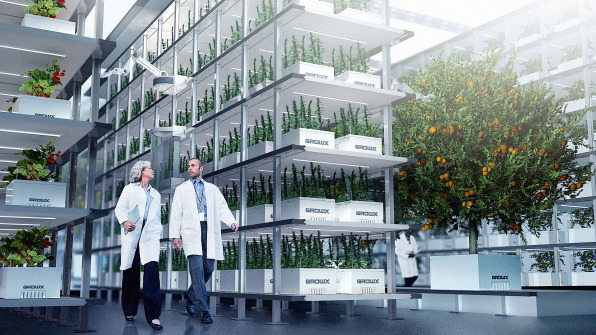 This Pot Company Is Cleaning Up The Weed Industry With Aeroponics
