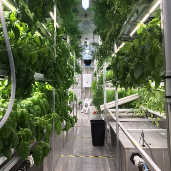 These Cold-Weather Container Farms Let Produce Grow In The Arctic