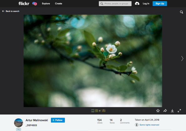 """Yes, Flickr Has A Future—As """"A Safe Place For Photographers"""""""