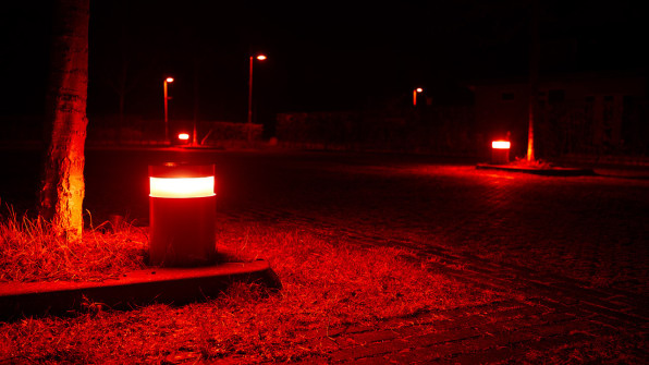 These bat-friendly lights show how to make cities safe for