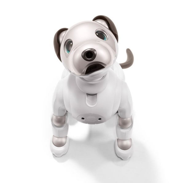 I Played With Aibo Sonys New Ai Powered Robotic Dog