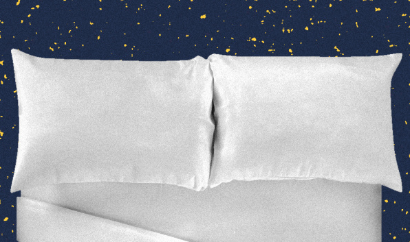 Neuroscientists quantify the value of a great pillow