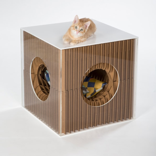 Custom-Designed Cat Homes