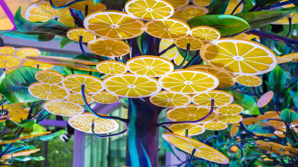 07 90654550 this surreal lemon themed installation could make
