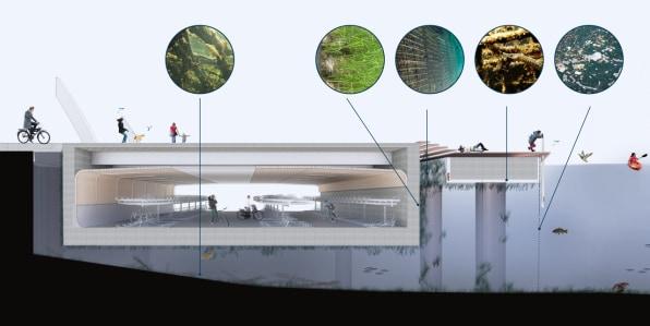 i 1 90675130 in amsterdam this underground bike parking garage is designed to also help fish