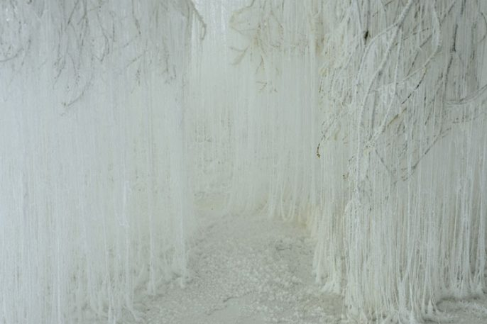A Shimmering Forest Of Ice, Made From Hot Glue And Urea