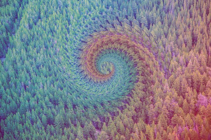 When Nature And Geometry Collide, These Photos Get Surreal