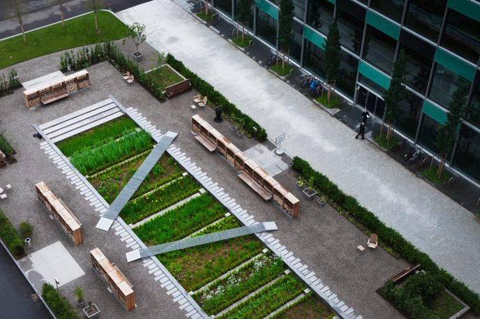A Landscape Architect Redesigns The Medieval Medicinal Garden