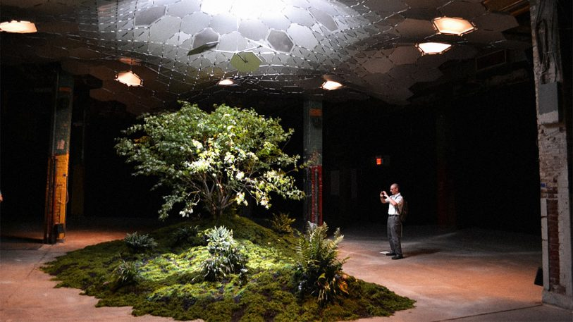New York City Approves The Lowline, The World's First Underground Park