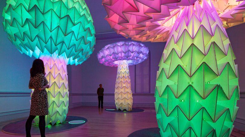 The Art Of Burning Man Looks Amazing Inside The Smithsonian