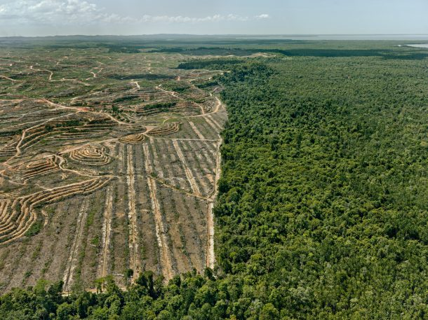 These photos show just how much damage humans have done to the planet