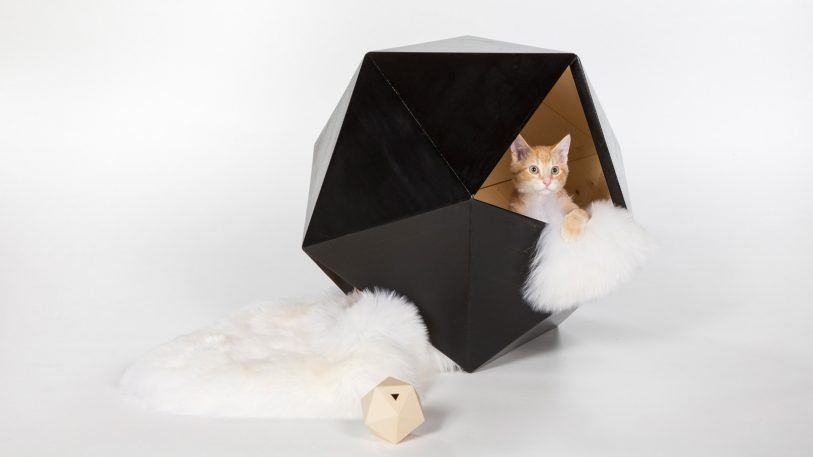 These cat houses are nicer than human houses