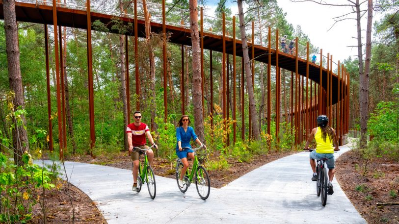 This treetop bike path takes you 30 feet up into the canopy of a forest