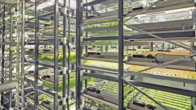 This Google Ventures-backed indoor farming startup just opened its biggest farm yet